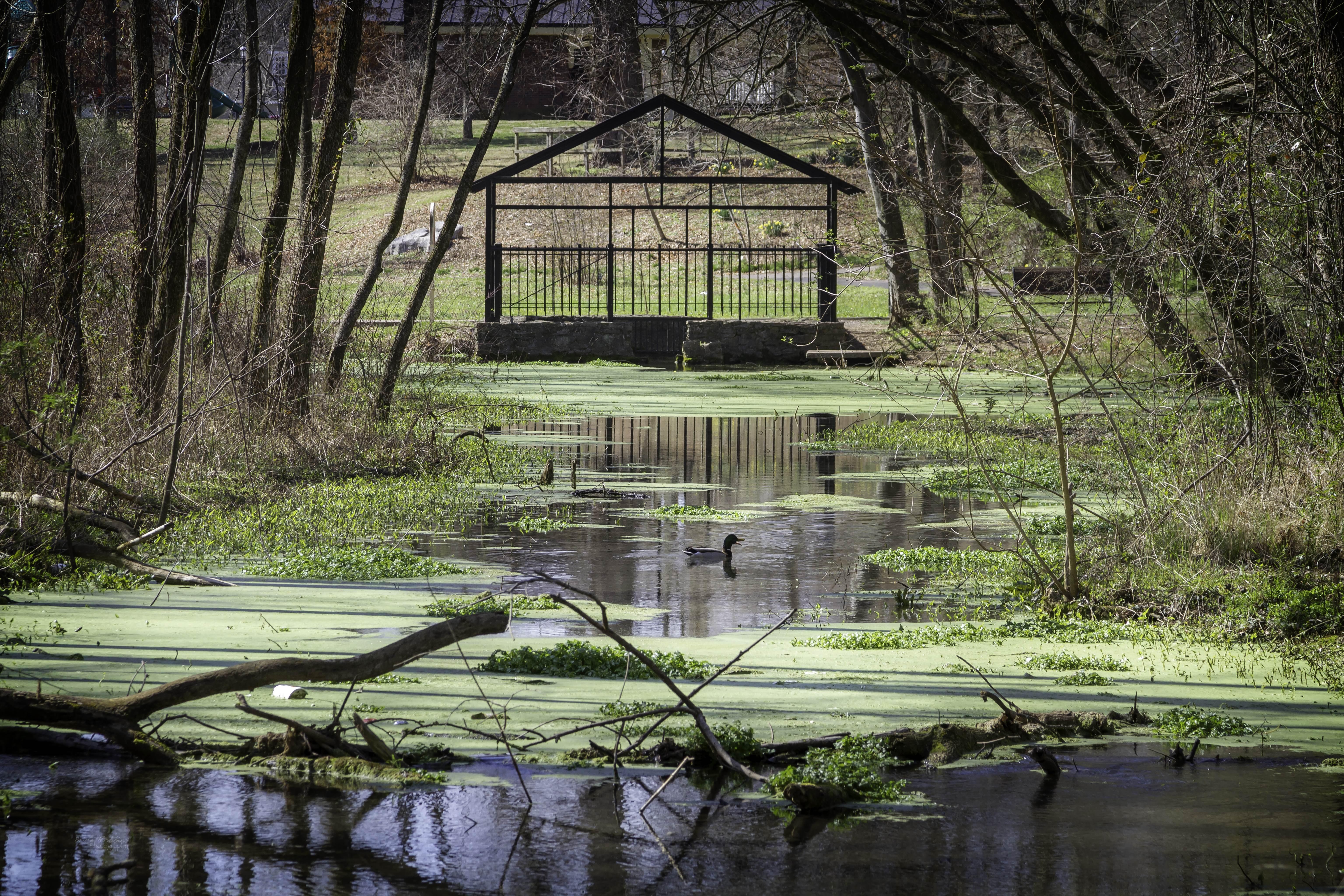 <br>Wetlands & Gardens Tour<br>April 8th